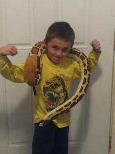 A kid posing with a giant, plush snake.